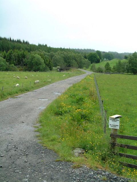 Road to Gallovie