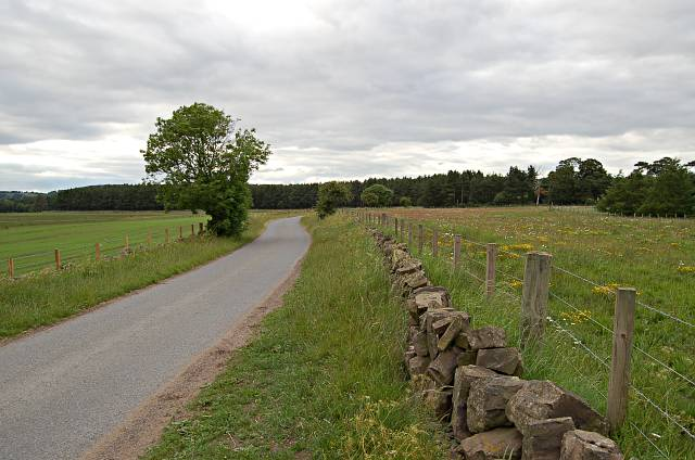 Road near Rossie