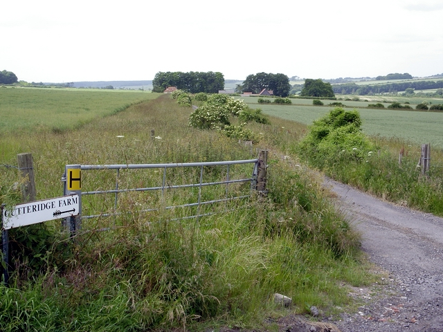 Track to Gutteridge Farm