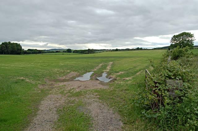 Farmland by Rossie House