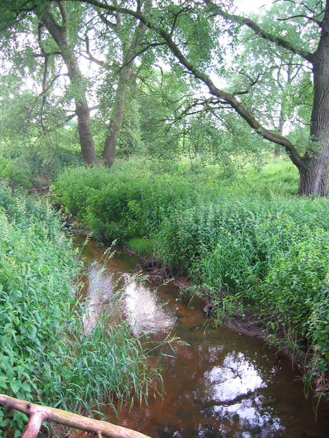 River Weaver at Heald Covert