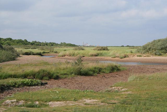 Old salt marsh at Seacroft