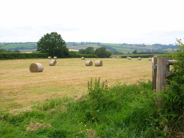 Field with hay bales, near Rhiwiau