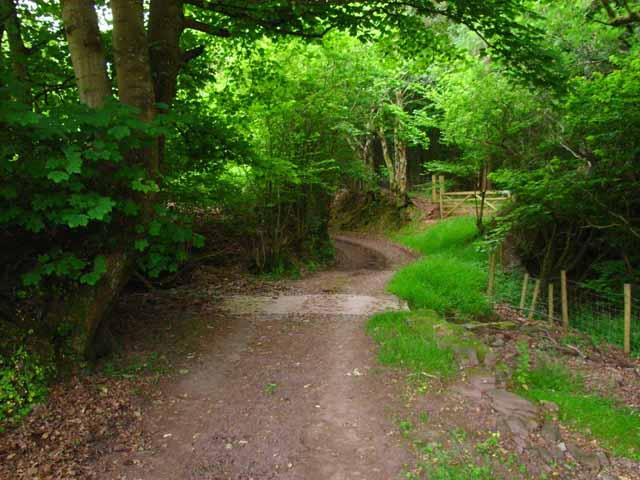 Bridleway in Cwm Oergwm