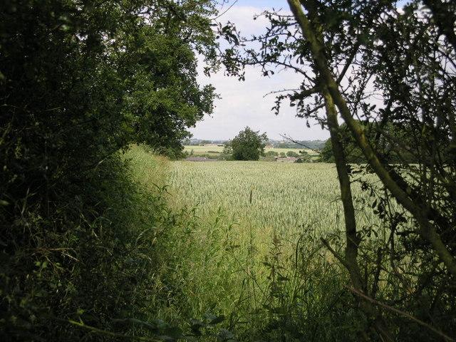 Footpath to Moreton
