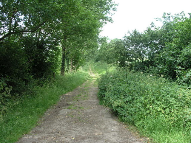 Byway to Moreton