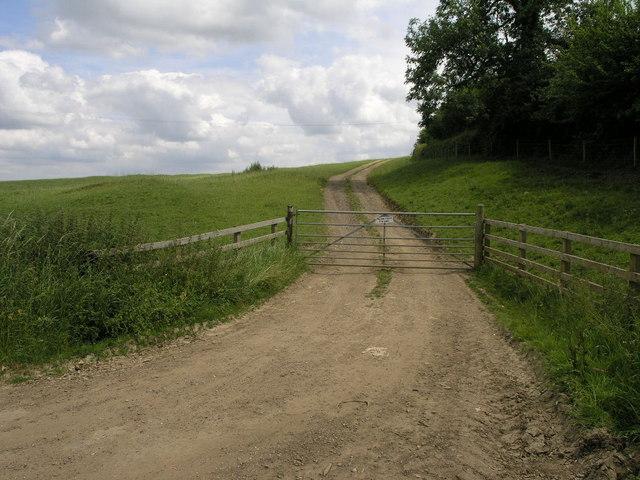 Steep Track