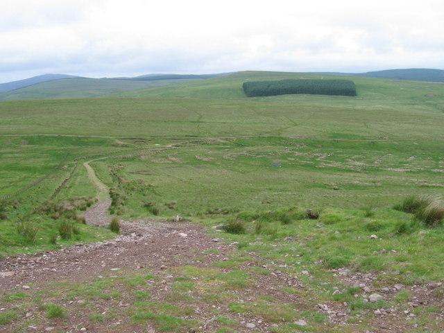 Cairn Kinney track looking over Bain's Knowe