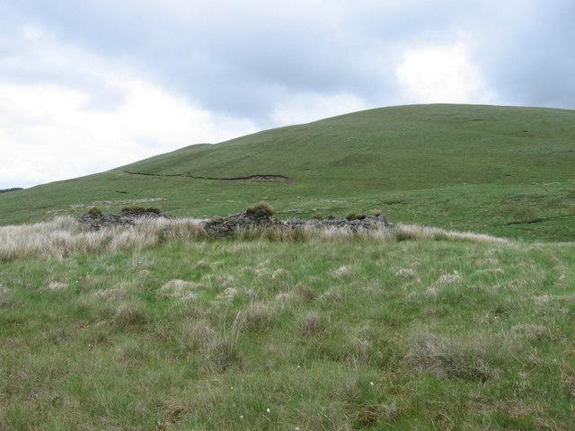 Disused sheepfold below Little Cairn Kinney