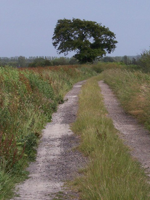Bridleway to Poling
