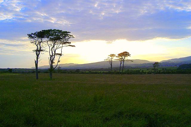 Great Meadow field, Isle of Man