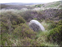 SD9435 : Boundary Stone looking down Hole Syke by tim