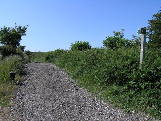North Downs Footpath