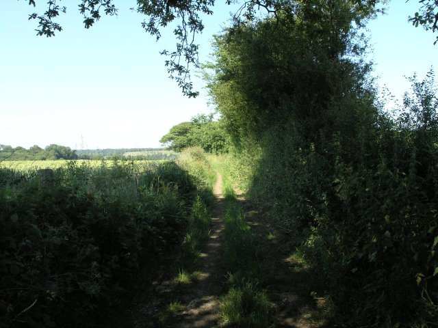 Public Footpath near Elmsted
