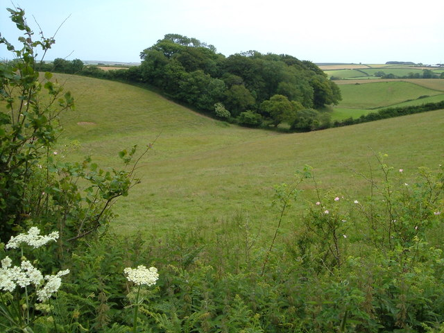 View from Blatchmore Lane