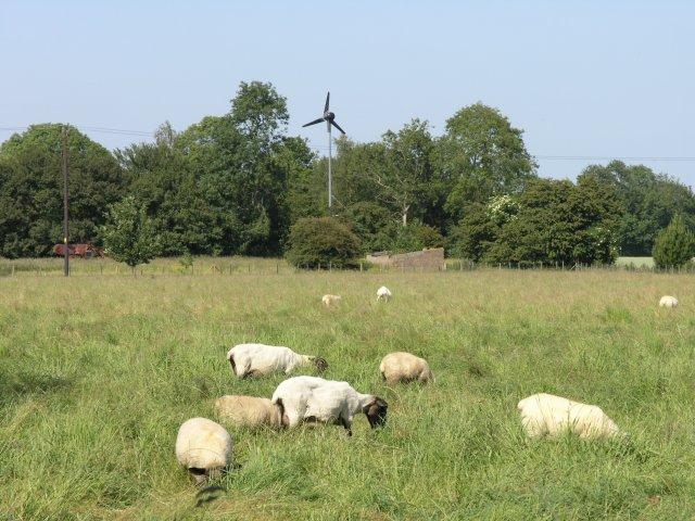 Wind turbine near Upper Maxted Street Farm