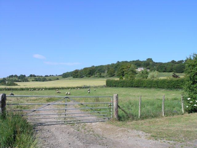 Fields north of Elham