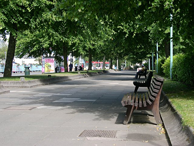 Shade and Rest on Royal Parade