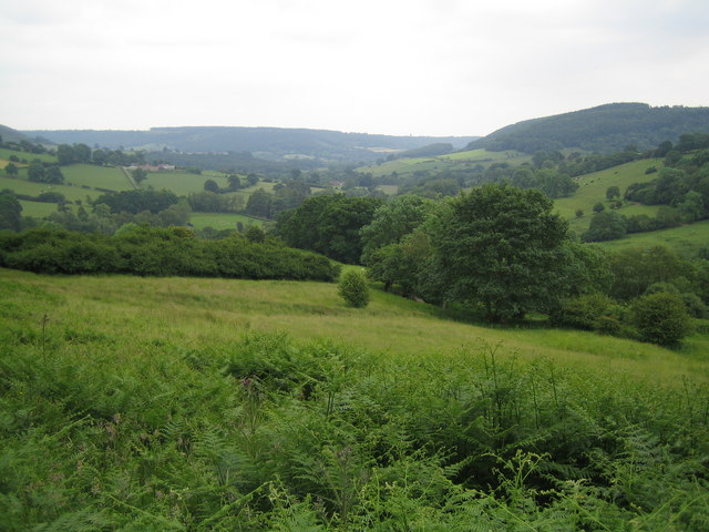 The view as you emerge from Nag's Head Wood Hawnby