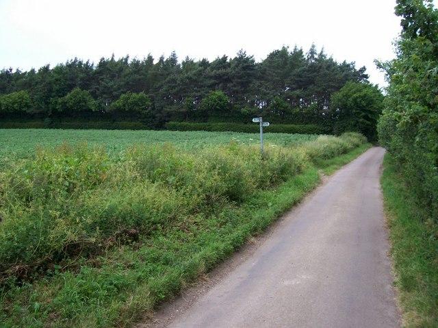Footpath crosses road