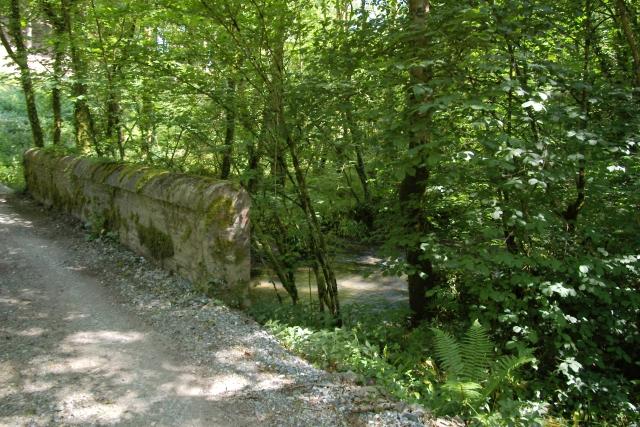Bridge and stream, Lydcott Woods
