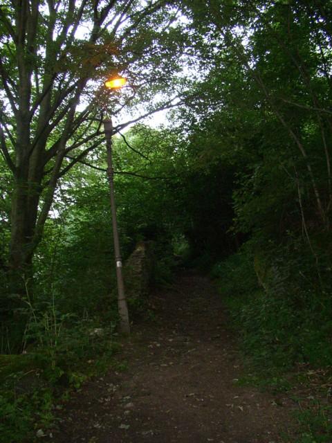 Street light on a bridleway