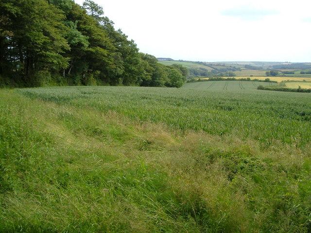 Field near Wadstray House
