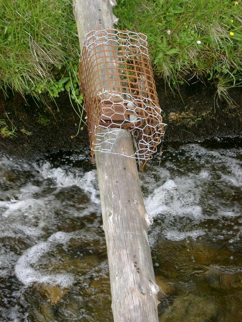 Vermin trap across the Snar Water