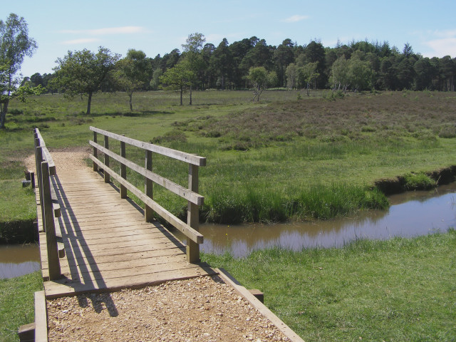 Footbridge over Ober Water, Ferny Knap, New Forest