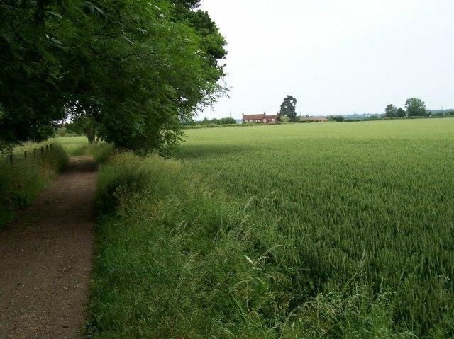 The way to Abbotshay