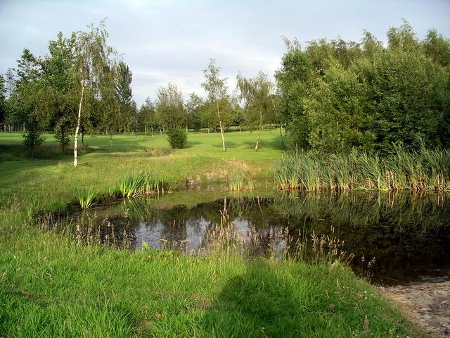 Pond, Ormonde Fields golf course