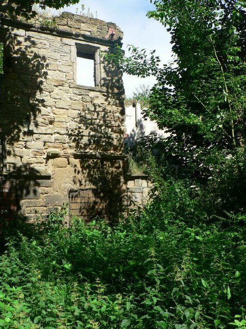 Derelict building, Newland Hall