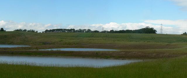 New ponds, Newland
