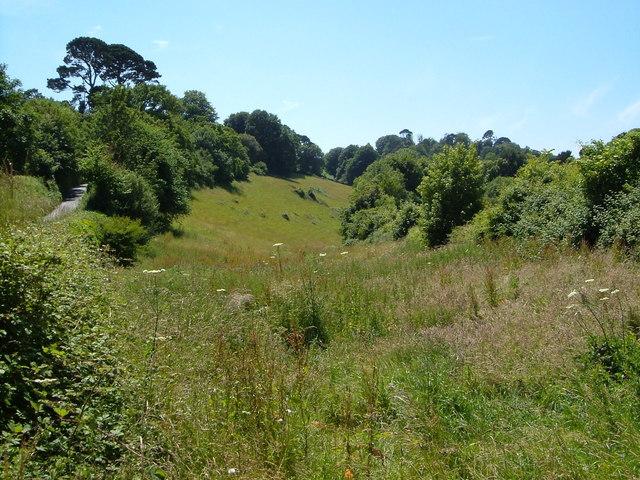 Meadow, Hook Bottom
