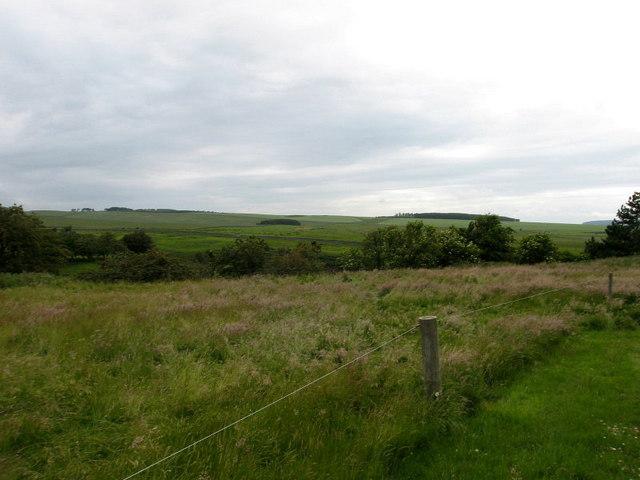 Shielstockbraes , near Morebattle