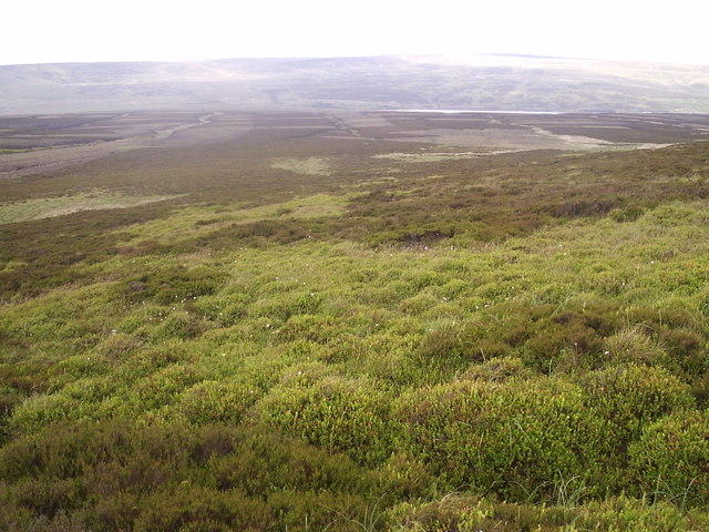 Moorland North East of Crow Hill