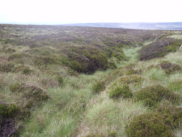 Top of clough, Sandy Hill Moor