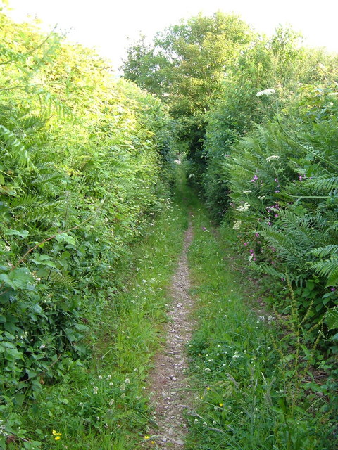 Butts Lane, Cornworthy