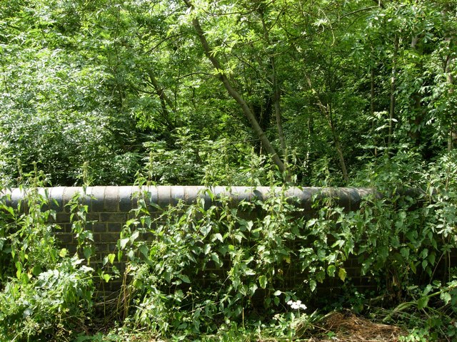 Overgrown Railway, Broughton Astley