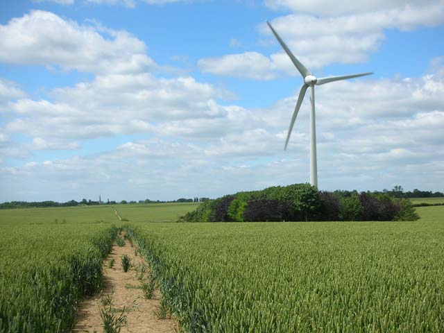 Footpath, wheatfield and wind turbine on Burton Wold