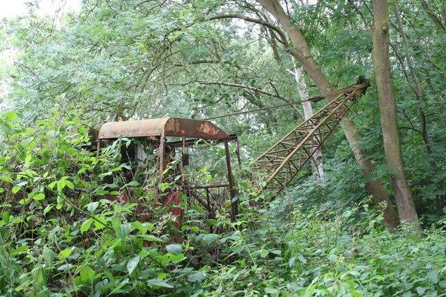 Old crane in Skellingthorpe Old Wood