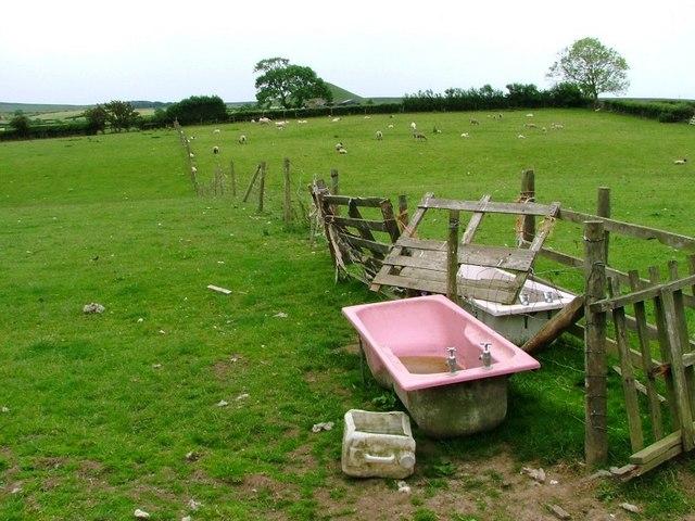 Sheep Pasture, Lodge Farm