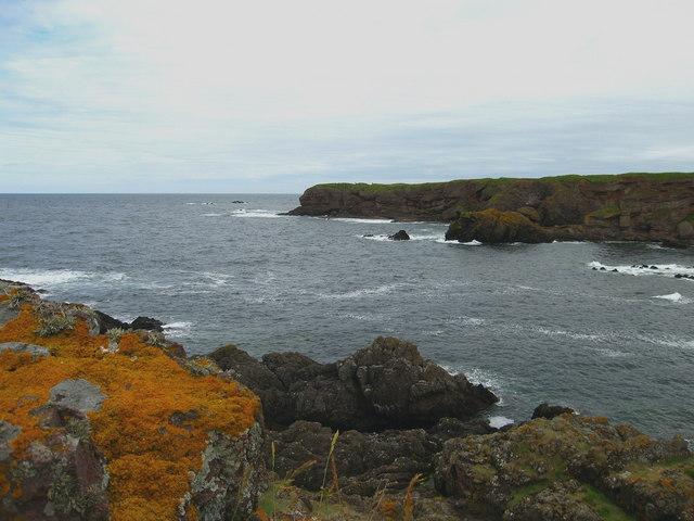 Headland at Eyemouth