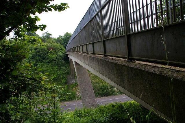 Bridle Path Span