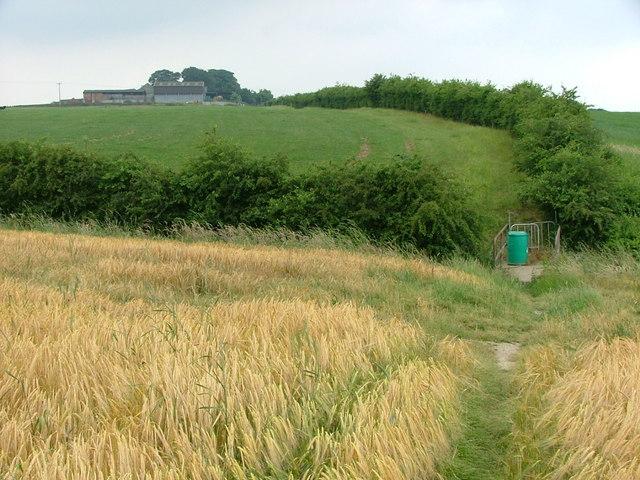 Path to Clayton Hall Farm