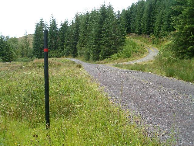 The road to Craignamoraig