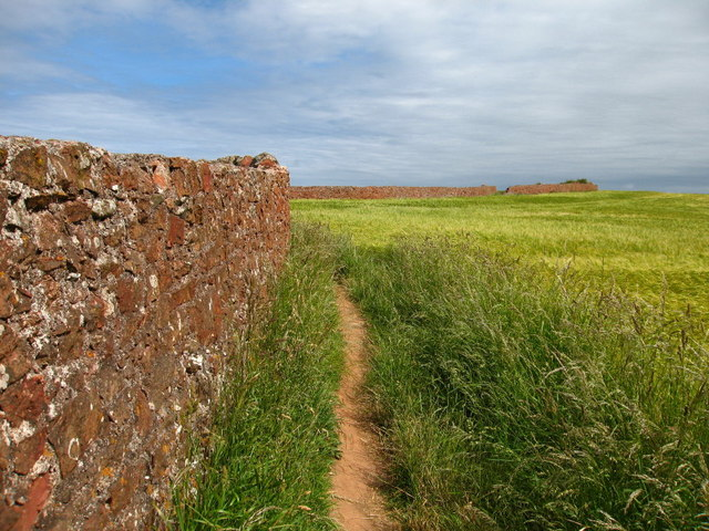 Coastal Path between Coldingham and Eyemouth