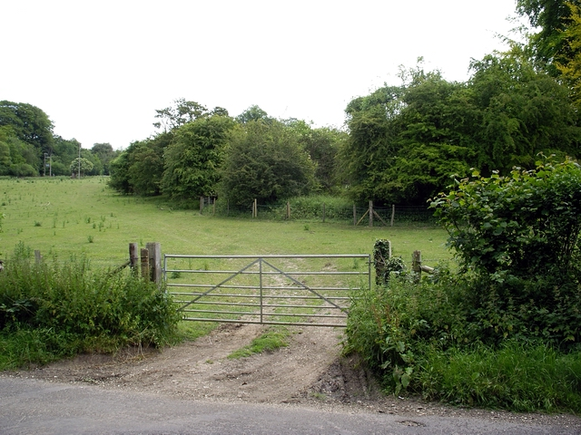 Copse to the east of West Dean Road