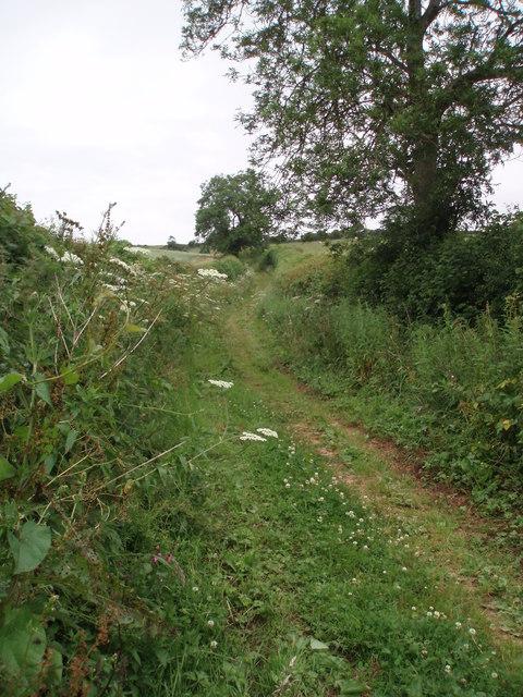 Mill lane track