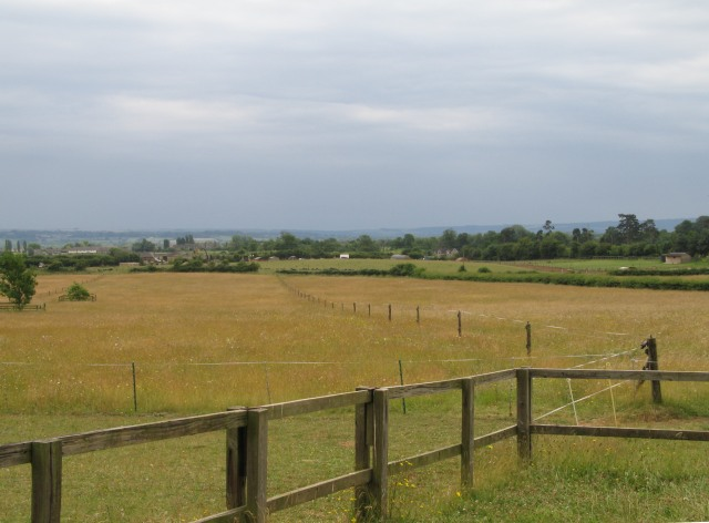 Grassed farmland